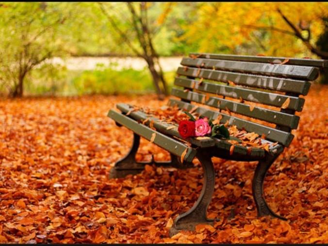 I-♥-Autumn-Tag